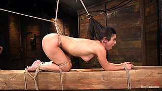Helpless slave Serena Blair hanging fro the roof while penetrated
