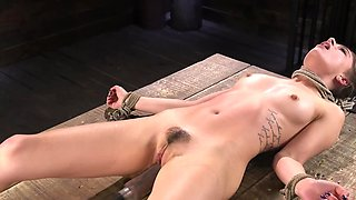 Hogtied babe burns in sex drive while sex-machine is fucking her